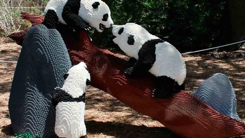 genial zoologico de animales solo en lego panda 1