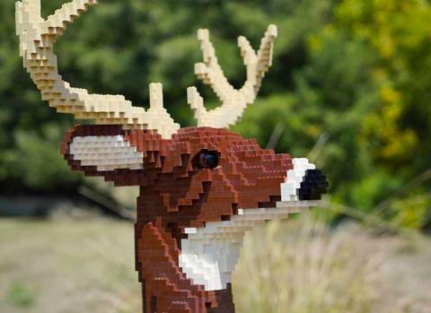 genial zoologico de animales solo en lego zoologico exhibe animales hechos con mas de 3 millones de piezas de lego 2