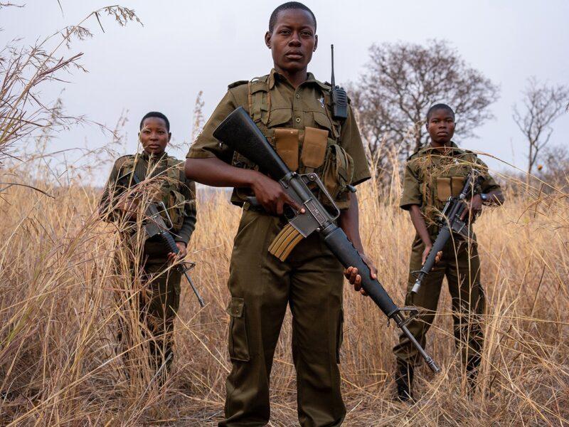 akashinga documental que muestra a mujeres africanas en la lucha por los elefantes sin violencia original 1598894482 akashinga aka ng 010